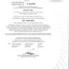 CSQ ISO 13485_2016